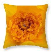 Sweet Heart Of Yellow Rose Throw Pillow