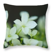 Sweet Hydrangea Throw Pillow