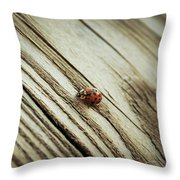 Sweet Lil 'lady Throw Pillow