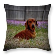 Sweet Neal Throw Pillow