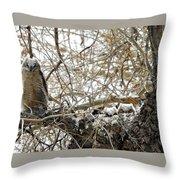Sweet Owlets Throw Pillow