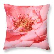 Sweet Pink Rose  Throw Pillow