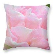 Sweet Pink Tulip Throw Pillow
