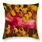 Sweet Pollen Throw Pillow