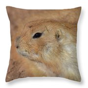 Sweet Profile Of A Prairie Dog Playing In Dirt Throw Pillow