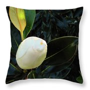 Sweet Promise Throw Pillow