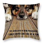 A Dogs Life Quote Throw Pillow