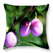 Sweet Ripe Blue Plum On A Branch Throw Pillow