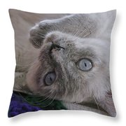 Sweet Sabrina Throw Pillow