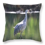 Sweet Sandhill By The Pond Throw Pillow