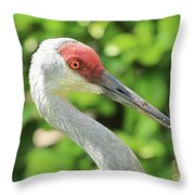 Sweet Sandhill Profile Throw Pillow