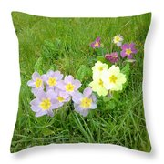Sweet Sensations 1007 Throw Pillow