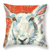 Sweet Sheep Throw Pillow