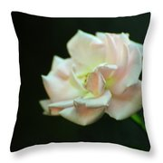 Sweet Sixteen Throw Pillow by Rebecca Sherman