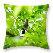 Sweet Song Mother Bird Throw Pillow