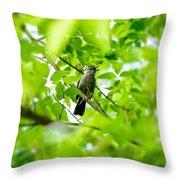 Sweet Song Mother Bird Throw Pillow
