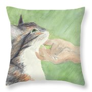 Sweet Spot Throw Pillow by Kathryn Riley Parker