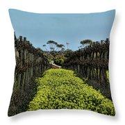Sweet Vines Throw Pillow by Douglas Barnard
