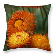 Sweet Was The Song Throw Pillow