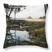 Sweet Water Park Throw Pillow