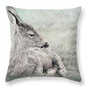 Sweet Young Deer Throw Pillow