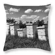 Sweetened Nature  Throw Pillow