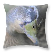 Sweetest Mallard Expression Throw Pillow