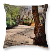 Sweetwater 5 Throw Pillow