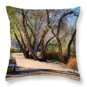 Sweetwater 6 Throw Pillow