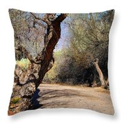 Sweetwater 7 Throw Pillow