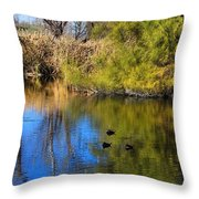 Sweetwater 8 Throw Pillow
