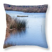 Sweetwater Wetland Pond Throw Pillow