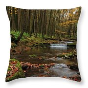 Swift Run Throw Pillow