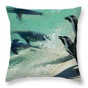 Swim Race - African Penquins Throw Pillow