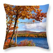 Swimmers Cove Throw Pillow
