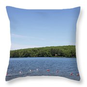 Swimming Area, Thorndike Pond Throw Pillow