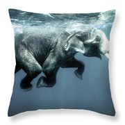 Swimming Elephant Throw Pillow
