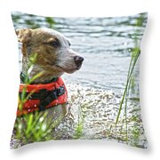 Swimming Family Dog Throw Pillow