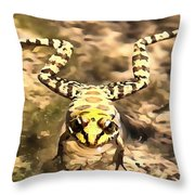 Swimming Frog Throw Pillow