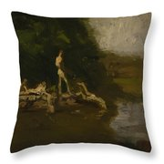 Swimming Hole Sketch Throw Pillow