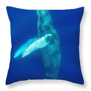 Swimming Humpback Throw Pillow