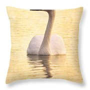 Swimming In Light B Throw Pillow