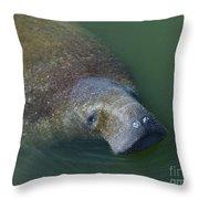 Swimming Manatee Throw Pillow