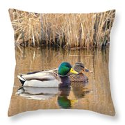 Swimming Partners Throw Pillow