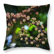 Swirl Of Beauty Throw Pillow