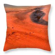 Swirling Algae Mats Throw Pillow