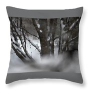 Swirling Into Winter Throw Pillow