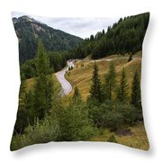 Swirling Mountain Road Throw Pillow