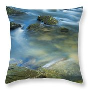 Swirling Pools Throw Pillow