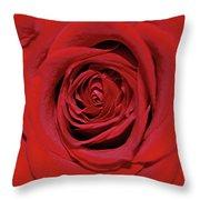 Swirling Red Silk Throw Pillow